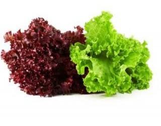 Red lettuce + Green Lettuce (Appror 250gm)