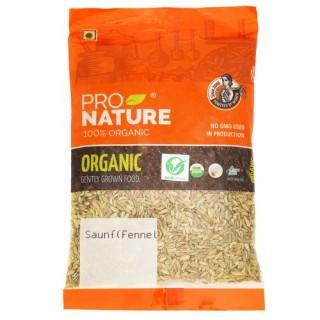 Pro nature 100% Organic Saunf fennel -100gm