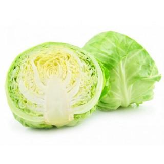 Cabbage (Patta Gobhi) - 1 pc Approx 700-900  gm