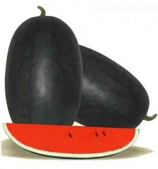 Watermelon Tarbooz(3.800gm -4.700gm)