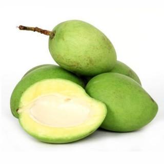 Raw Mango - (450gm-550gm)